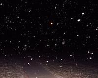 snow20dec.jpg